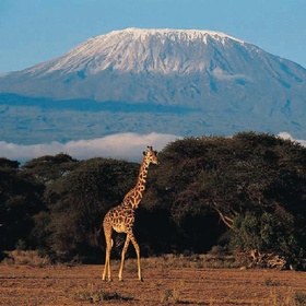 Climb Mt. Kilimanjaro - Bucket List Ideas