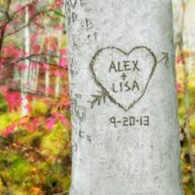 Carve mine and my crush's name into a tree - Bucket List Ideas