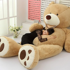 Having a big teddy bear - Bucket List Ideas