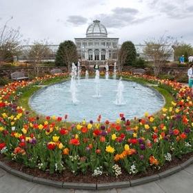 Visit the Botanical Garden in Richmond, VA - Bucket List Ideas