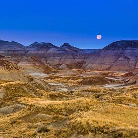 Explore Dinosaur Provincial Park in Canada - Bucket List Ideas