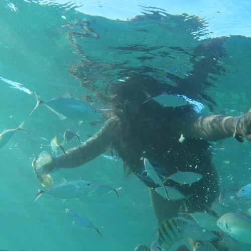 Snorkeling - Bucket List Ideas