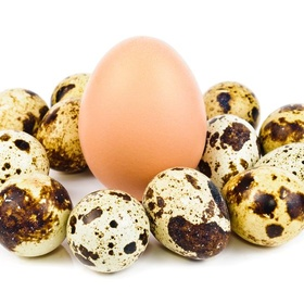 Eat quail eggs - Bucket List Ideas