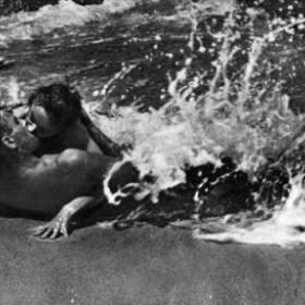 Make love on the beach at night - Bucket List Ideas