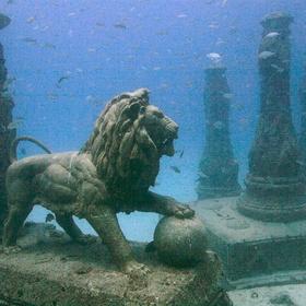 See Neptune Memorial Reef in Florida - Bucket List Ideas