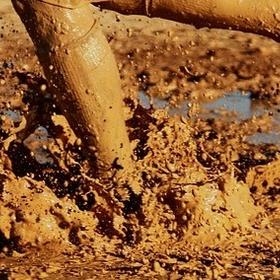Compete in the Mud Run - Bucket List Ideas