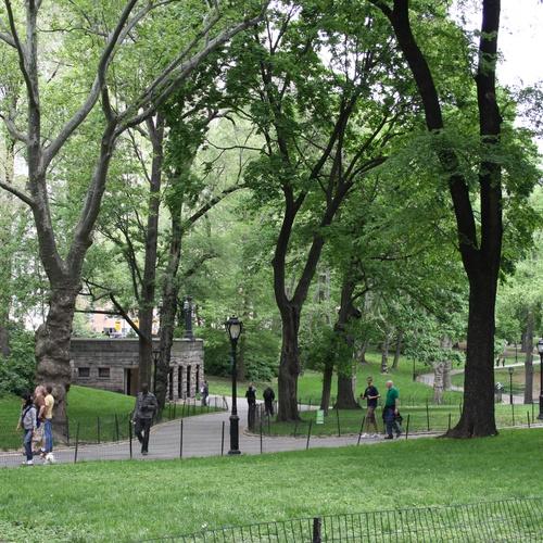 Visit central park - Bucket List Ideas