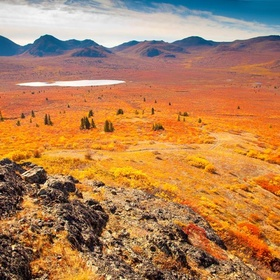 Explore the Yukon Toundra - Bucket List Ideas