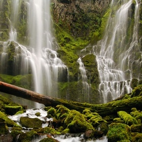Visit Proxy Falls in Oregon - Bucket List Ideas