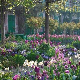 Visit Monet's garden in Giverny, France - Bucket List Ideas