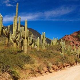 Visit Argentina - Bucket List Ideas