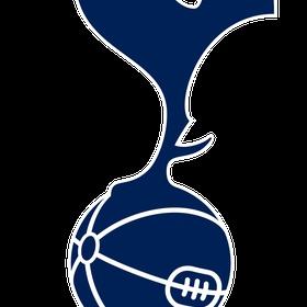Visit a game of Tottenham Hotspur in England - Bucket List Ideas