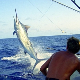 Catch a Fish Heavier than Me - Bucket List Ideas