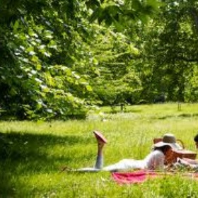 Have a picnic in the park - Bucket List Ideas