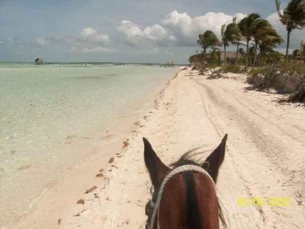 Go horseback riding on the beach - Bucket List Ideas