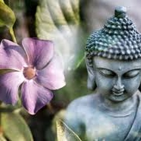 Read a book on Buddhism - Bucket List Ideas