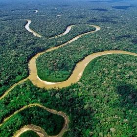 Amazon Rainforest - Visit the Jungle - Bucket List Ideas