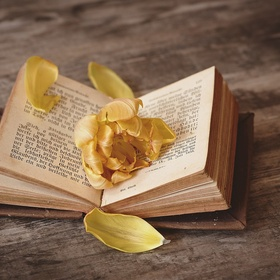 Leave an inspirational note inside a book for someone to find - Bucket List Ideas