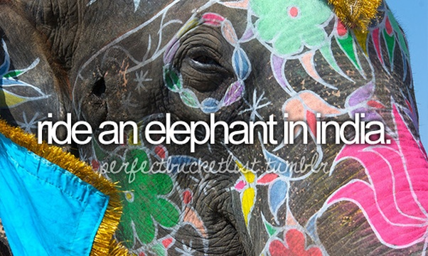 Ride An Elephant In India - Bucket List Ideas