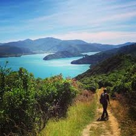 Hike Queen Charlotte Track, New Zealand - Bucket List Ideas