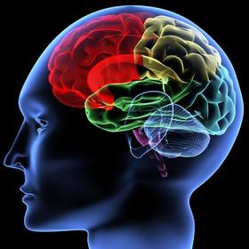 Test My Brain - Bucket List Ideas