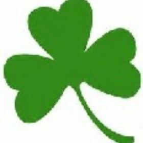 Celebrate St. Patrick's day in a big city:  NY, Boston, or Dublin - Bucket List Ideas