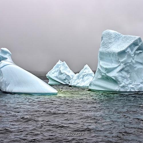 Visit Iceberg Alley - Bucket List Ideas