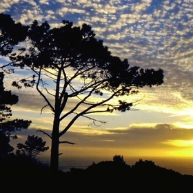 Have a picnic on Signal Hill while watching the sun set - Bucket List Ideas