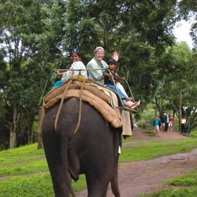 India - Ride an Elephant - Bucket List Ideas