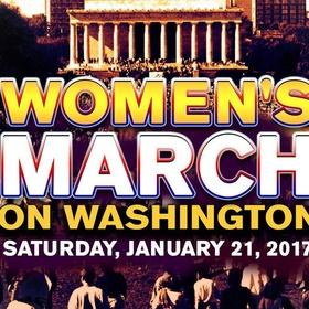 Attend the Womens March on Washington - Bucket List Ideas