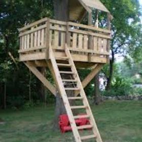 Build a tree fort - Bucket List Ideas