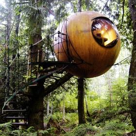 Sleep in a Free Spirit Sphere - Bucket List Ideas