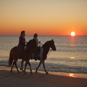 Horseback ride on the beach - Bucket List Ideas