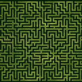 Find my way through a maze - Bucket List Ideas