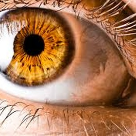 Get amber eye with biokinesis - Bucket List Ideas