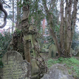 Visit highgate cemetery - Bucket List Ideas