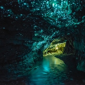 Visit the Glow Worm Caves in New Zealand - Bucket List Ideas