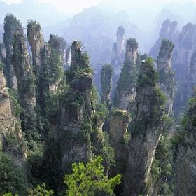 China - Zhangjiajie National Forest Park (Tianzi Mountains) - Bucket List Ideas