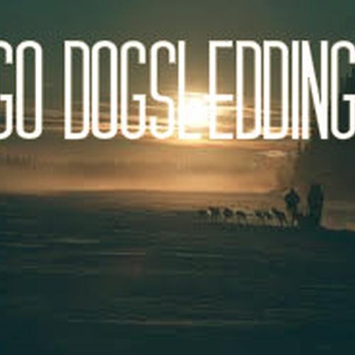 Go Dogsledding - Bucket List Ideas