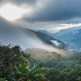 Visit Ecuador's Cloud Forests, Ecuador - Bucket List Ideas