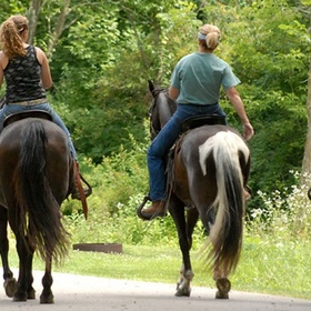 Go horseback riding - Bucket List Ideas