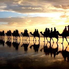 Have a ride on a camel - Bucket List Ideas
