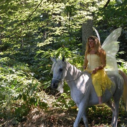 Ride a unicorn - Bucket List Ideas