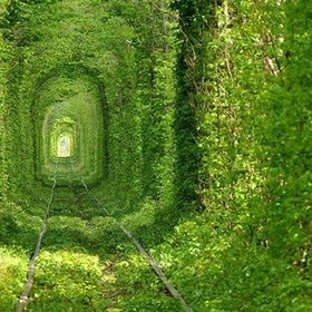 Walk down the tunnel of love, Ukraine - Bucket List Ideas