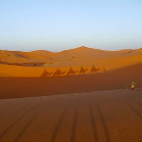 See the Sahara - Bucket List Ideas