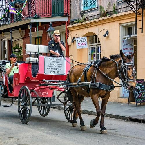 Visit New Orleans French Quarter, Louisiana - Bucket List Ideas