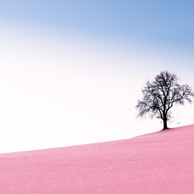 Have a minimalist lifestyle - Bucket List Ideas