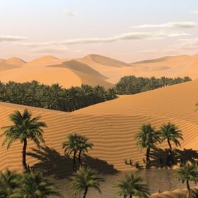 Going to a desert with tour - Bucket List Ideas