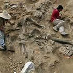 Go digging for dinosaurs - Bucket List Ideas