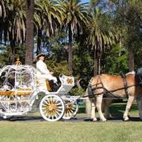 Go on a horse and carriage ride - Bucket List Ideas